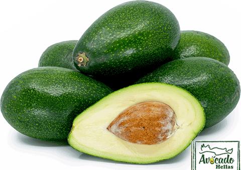 Aβοκάντο Zoutano , avocado ζουτανο τιμή